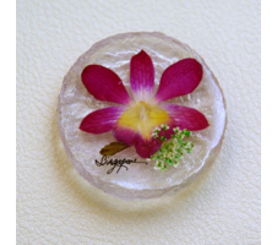 Pressed Orchid Magnet Acrylic - Round