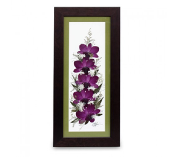 """Pressed Orchid Frame 6""""X15"""""""