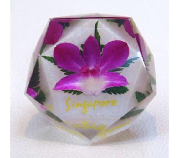 Paperweight 12 Diamond Cuts
