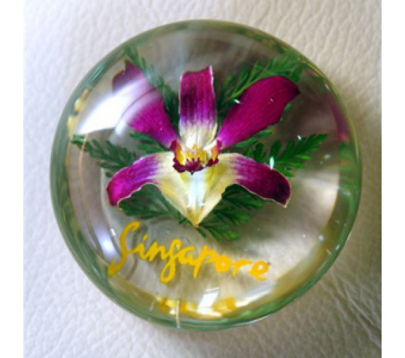 Paperweight Space