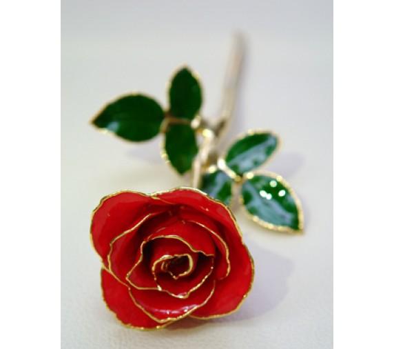 Rose Stalk Red