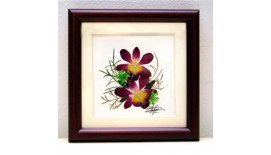 "Pressed Orchid Frame 5""X 5"""