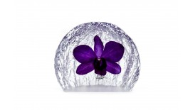 Paperweight Semi Circle Medium
