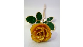 Rose Stalk Yellow